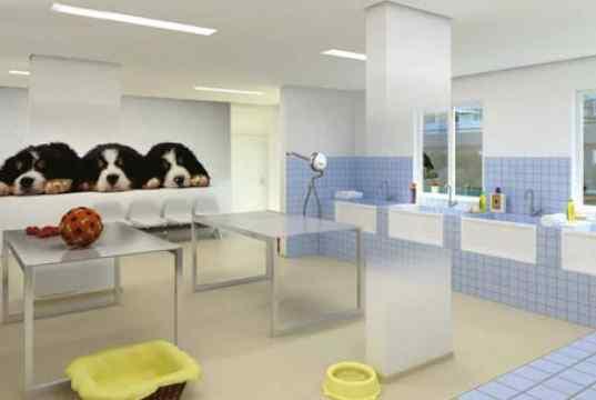 Imagem Ilustrativa do Pet Care